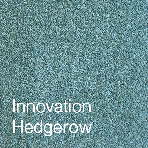 Innovation Hedgerow